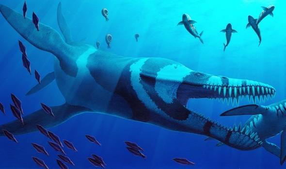 Pliosaurus_kevani