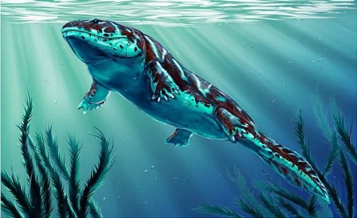 Causas de la extinción del Ichthyostega