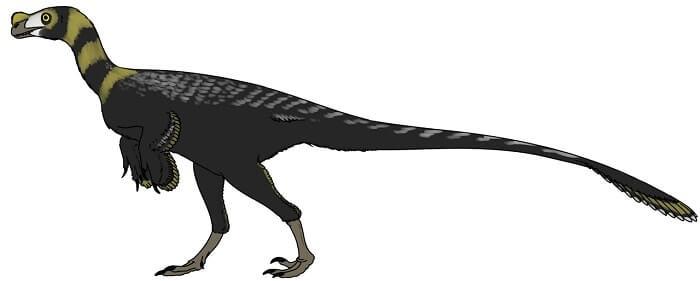 Historia acerca el Ornitholestes