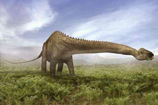 Alimentación de los Diplodocus