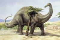Herbívoros del Jurásico