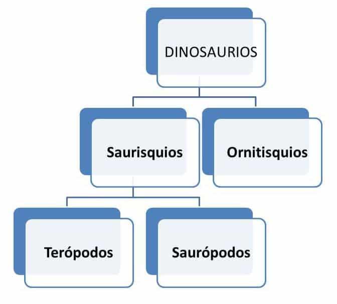 grafico tipos dinosaurios segun cadera
