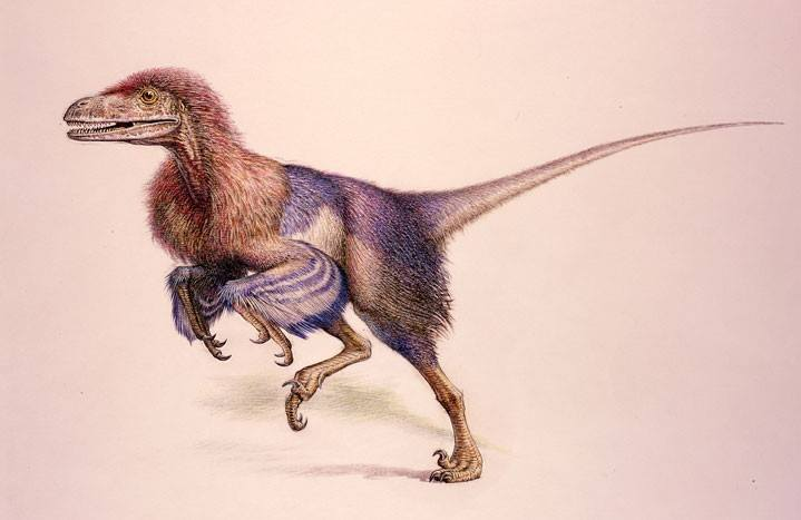 Deinonychus – dinosaurio carnívoro