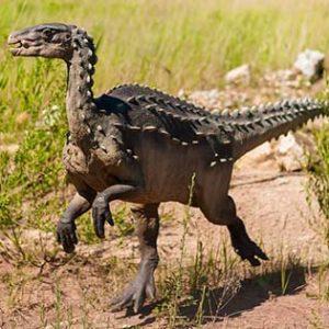 abrictosaurus – dinosaurio omnivoro