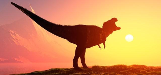 cursos de paleontologia gratis