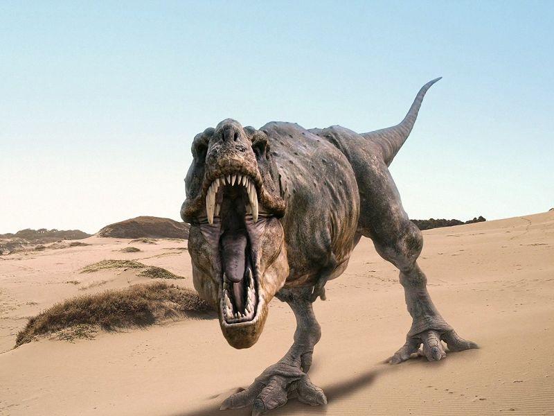 como era el tyrannosaurus rex y características