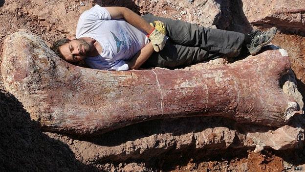femur de un dinosaurio gigante encontrado en la patagonia