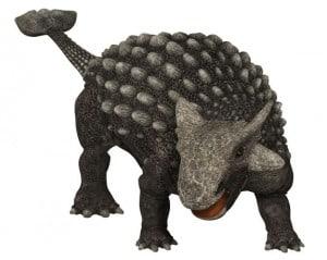 Como eran los ankylosaurus