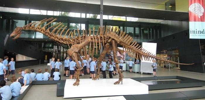 Exposición de Amargasaurus en el Museo de Melbourne