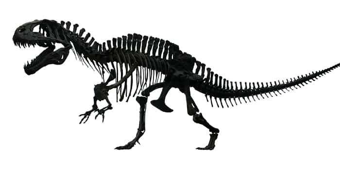 Características del Acrocanthosaurus