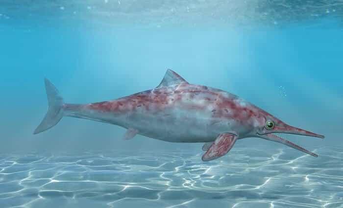 Historia del Ichthyosaurus