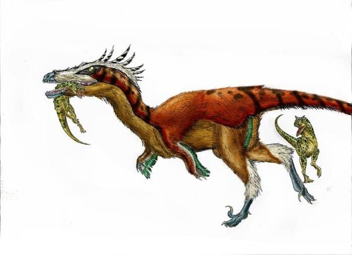 Alimentación de los Austroraptors