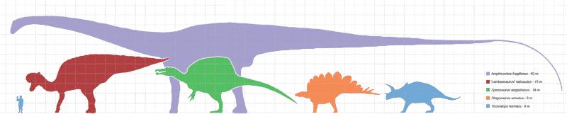 Cual Fue El Dinosaurio Mas Grande Del Planeta Tierra Dinosaurios Los dinosaurios eran demasiado grandes para vivir en esas circunstancias y se extinguieron. cual fue el dinosaurio mas grande del