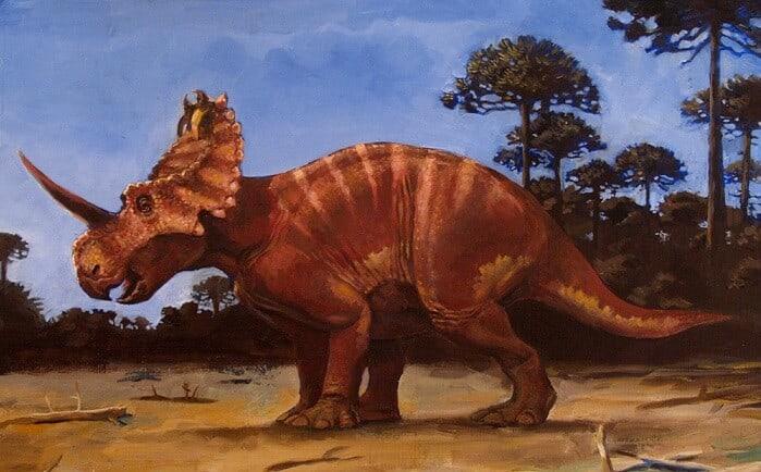 Algunos detalles sobre el Centrosaurus