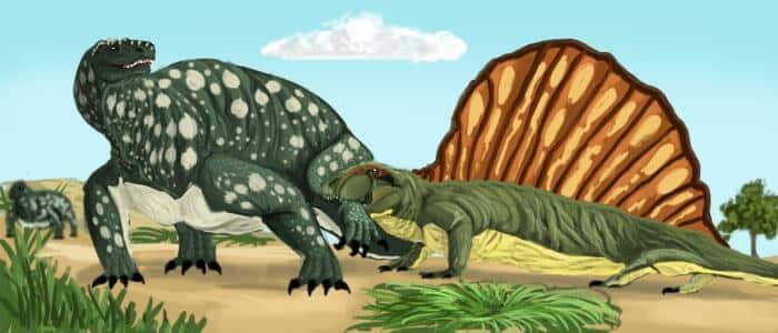 dimetrodon-vs-edophosaurus