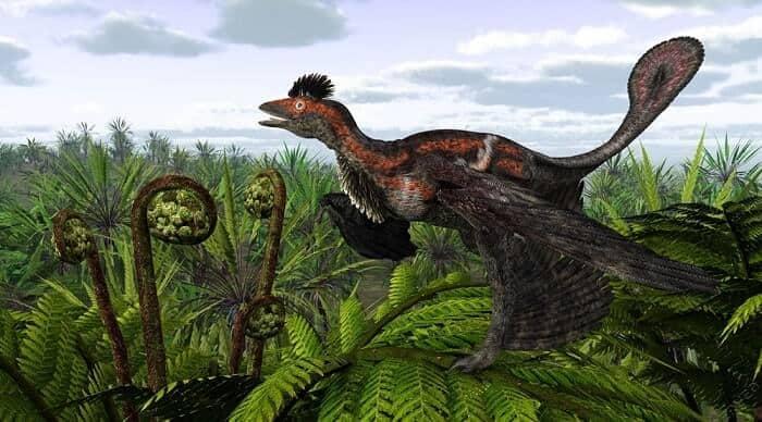 Hábitat natural del Microraptor