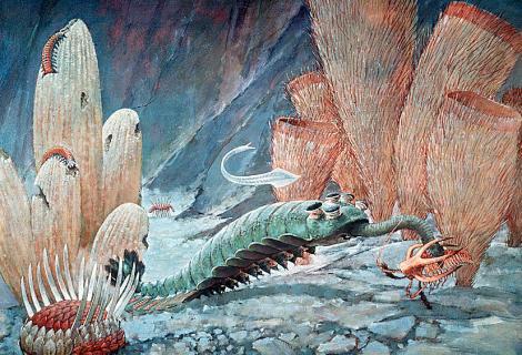 Como fue y como participó la época cambrica en la evolución de los dinosaurios