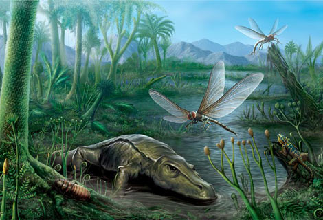 epoca carbonifero