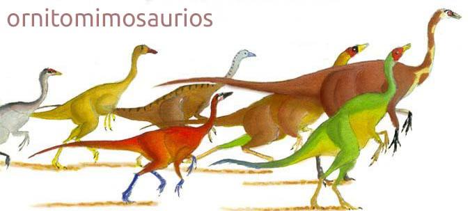 grupo ornitomimosaurios