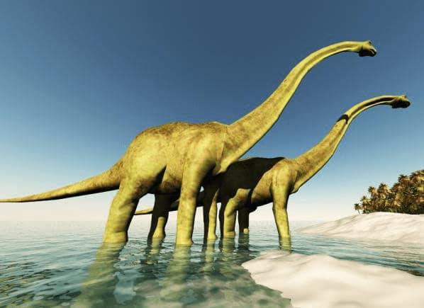 Reproduccion braquiosaurus en 3D