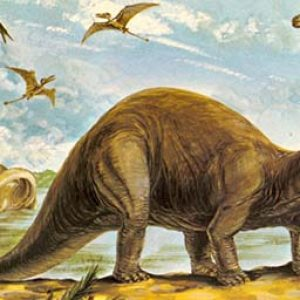 Apatosaurus – dinosaurio herbivoro