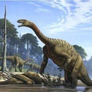 Plateosaurus – dinosaurio herbivoro