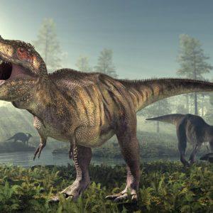 Tyrannosaurus_rex