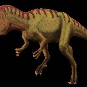 cryolophosaurus – dinosaurio carnívoro