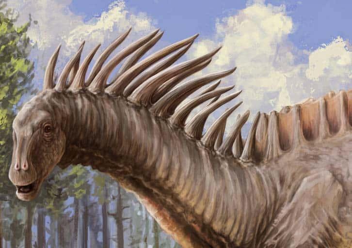 cresta del amargasaurus