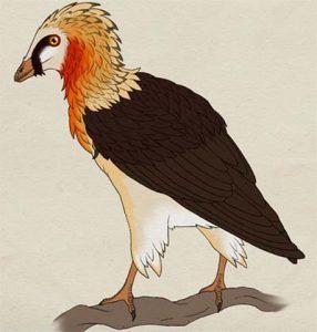 Avisaurus - ave prehistorica
