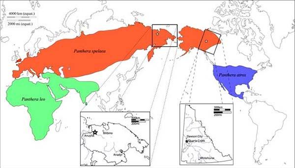 mapa distribucion del leon prehistorico