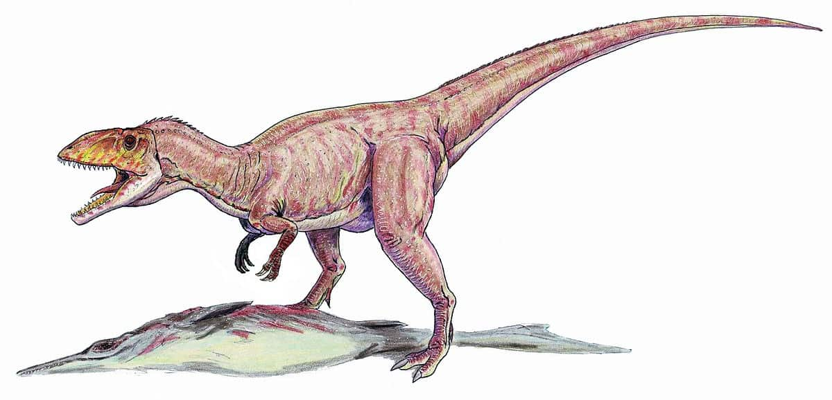Eustreptospondylus en su caza